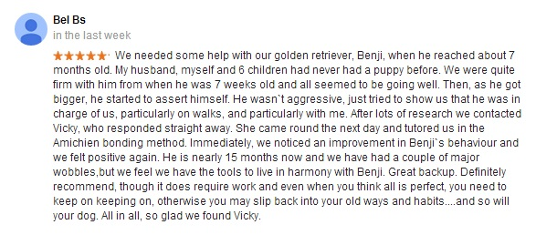 Review for Vicky Kelly Dog Listener