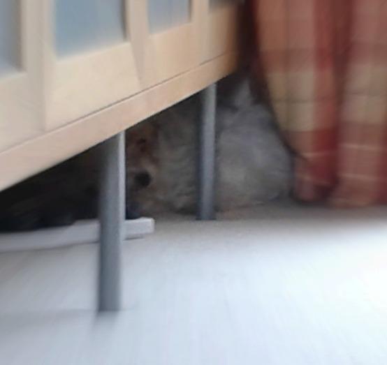 Doris scared