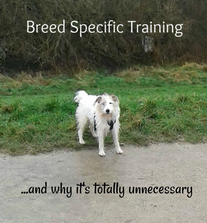 breed specific training
