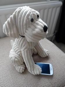 dog walking by smart phone