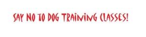 dog training classes essex